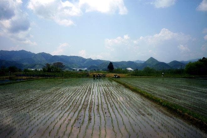 5 Days in Yamagata イメージ
