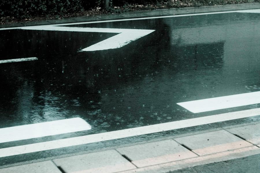 image 10 days in Yamagata 2012 1